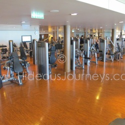 Pulse Fitness Center, Norwegian Epic