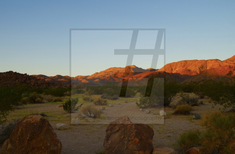 #joshua tree & big bear lake – 030 Kopie