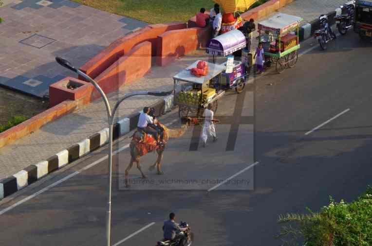 #jaipur – 011 Kopie