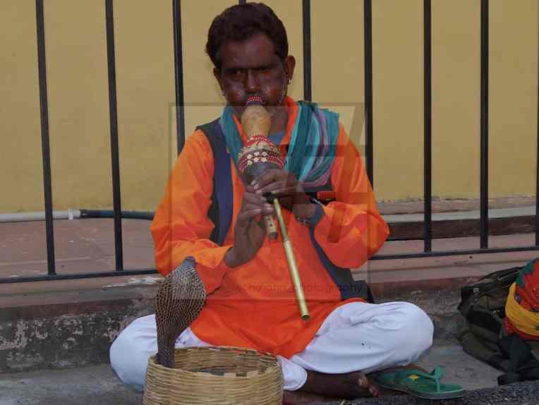 #jaipur – 216 Kopie