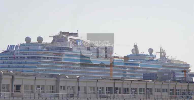 Royal Princess3